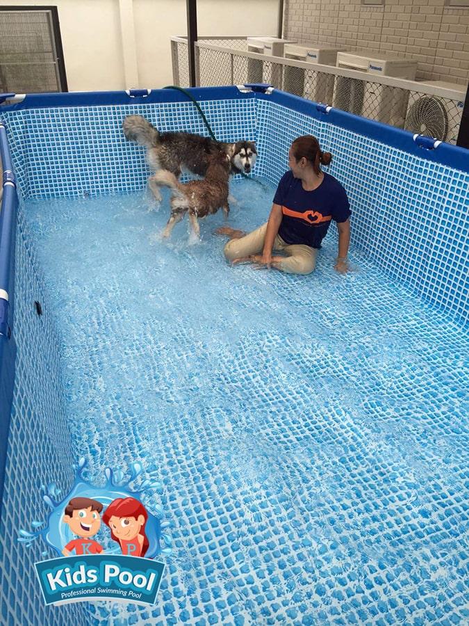 สระว่ายน้ำสำเร็จรูป Intex Metal Frame 0013